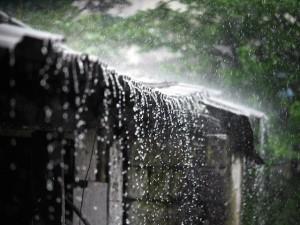 最潮湿的地方