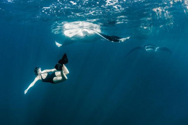 潜入那片海