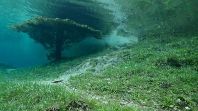 Underwater Park