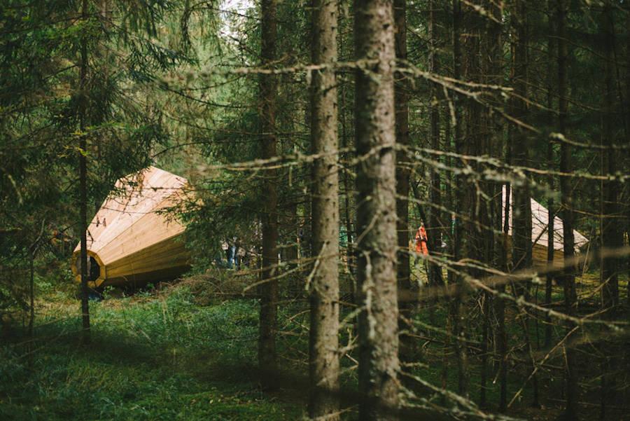 丛林中的扩音器