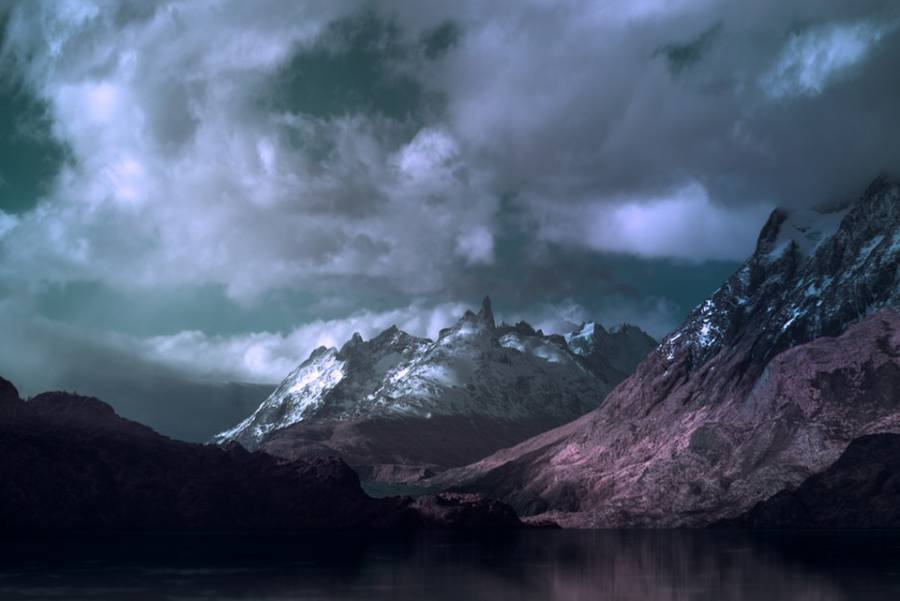 Andy Lee